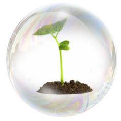 Стимуляторы, регуляторы роста растений