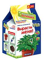 Увлекательная ботаника: Мелисса Ранок Украина