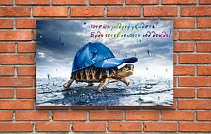 """Мотиватори, постери """" Хочешь попасть под радугу?Будь готов попасть под дождь!"""""""