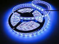 Влагостойкая светодиодная лента синий свет 5050 IP65 60 диод./м 14.4 вт/м