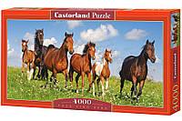 """Пазлы касторленд на 4000 деталей. """"Табун лошадей"""". Гарантия качества."""