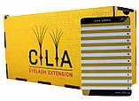 LashBox Для Ресниц Cilia [GOLD] (Лэшбокс С 10 Планшетками), фото 4