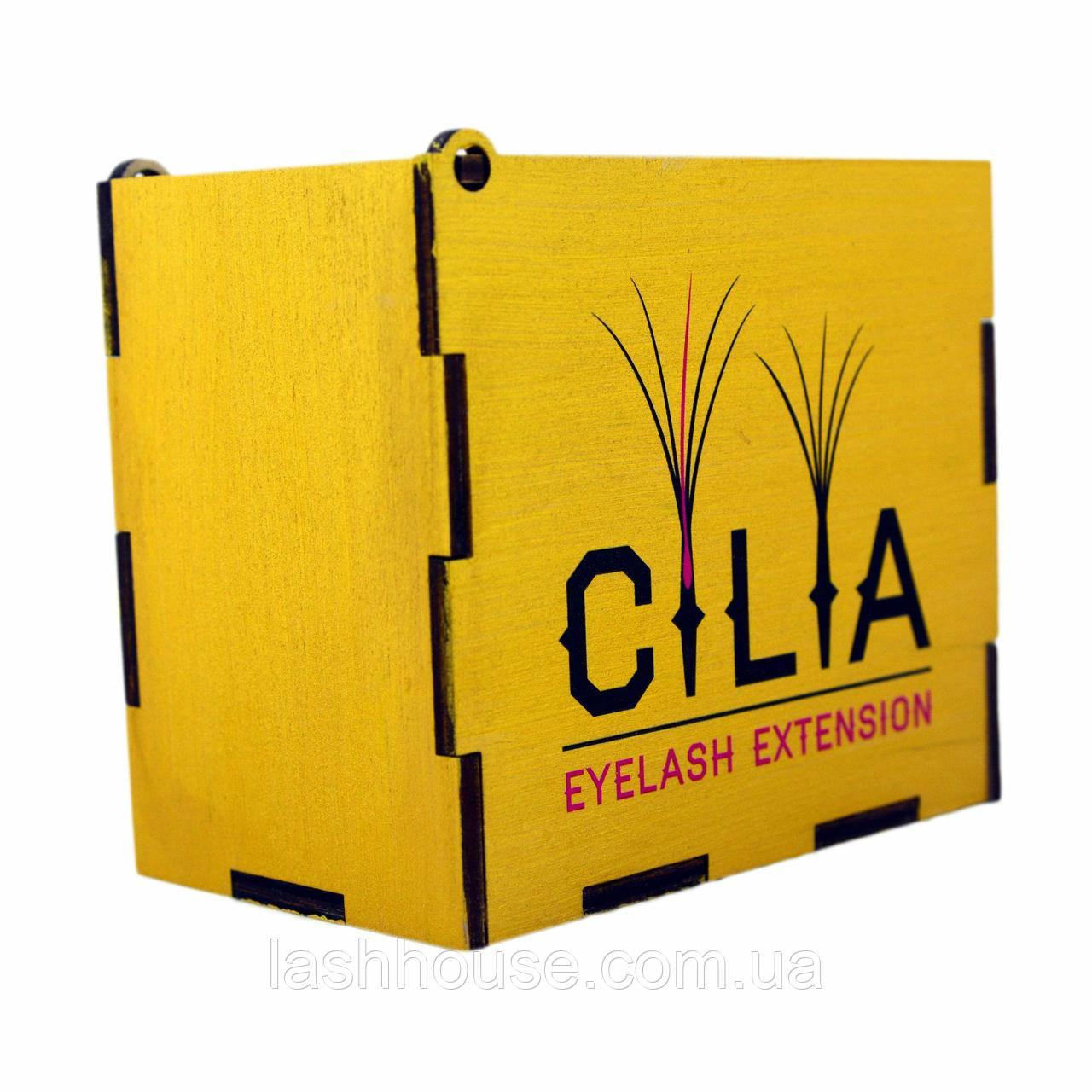 LashBox Для Ресниц Cilia [GOLD] (Лэшбокс С 5 Планшетками)