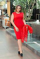Костюм  платье + накидка БАТАЛ 05450А , фото 3
