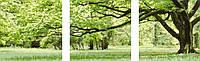 Картина по номерам MS14057 Триптих Зеленое дерево (50 х 150 см) Турбо