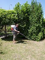 Защита растений, газона на участке от перегрева