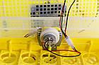 Инкубатор бытовой Теплуша Europe 112 автомат +12 в резервное питание, фото 6