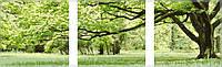Раскраска по номерам Триптих Зеленое дерево (MS14057) 50х150 см, фото 1