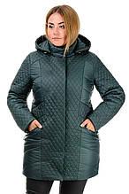 Куртка зимняя «Урсула», р-ры 50-58, №216 зеленый