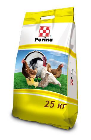 fb2f615f79dd14 41015, 25 кг, Готовий корм для курчат та бройлерів стартер: продажа ...