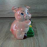 Копилка Свинка денежная, фото 3