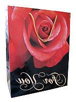 Подарочный пакет  33*27 см Для тебя KD915153 (Подарочные пакеты)