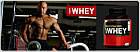 Протеин 100% Whey Gold Standard (2,27 кг) Optimum Nutrition, фото 3