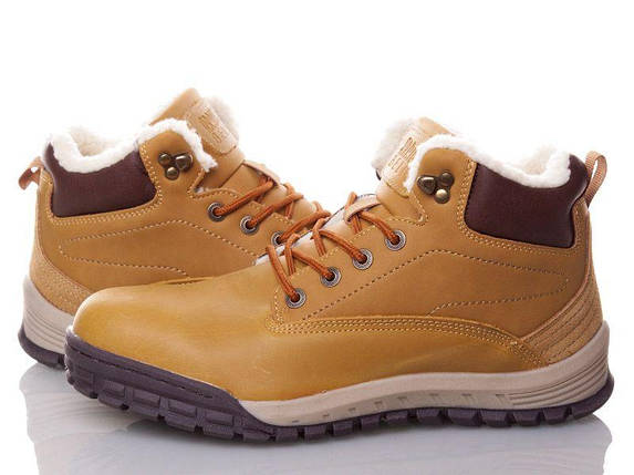 Шкіряні зимові чоловічі черевики ARRIGO BELLO (Camel) світло коричневий 41р-46р, фото 2