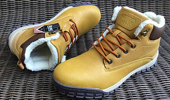 Шкіряні зимові чоловічі черевики ARRIGO BELLO (Camel) світло коричневий 41р-46р, фото 3
