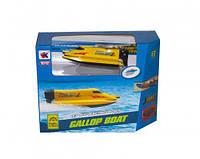 Лодка на радиоуправлении 3313