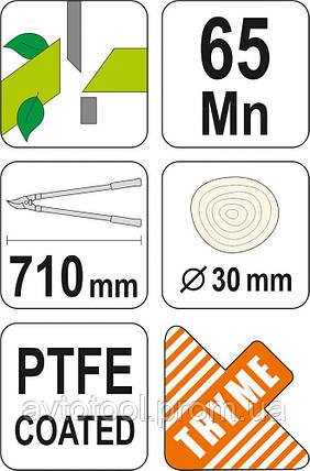 Сікатор до гілок d= 30 мм, l= 710 мм (99109 Vorel), фото 2