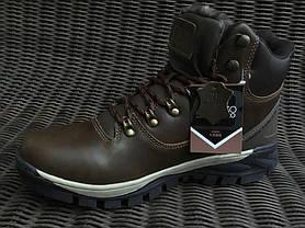 Натуральна шкіра зимові чоловічі черевики ARRIGO BELLO темно - коричневі 43р, 44р, фото 3