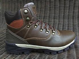 Натуральная кожа зимние мужские ботинки ARRIGO BELLO темно - коричневые 43р, 44р, фото 3