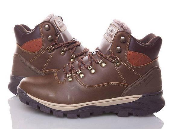 Натуральная кожа зимние мужские ботинки ARRIGO BELLO темно - коричневые 43р, 44р, фото 2