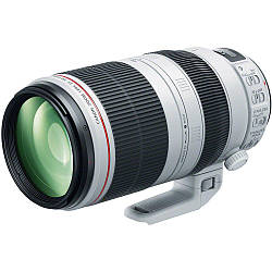 Объектив CANON EF 100-400mm f/4-5.6L IS II USM