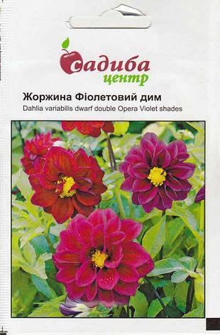 Георгин Фиолетовый дым 0,1 г (Садыба Центр), фото 2