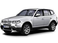 Килимки BMW X3 (E83)