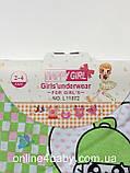 Труси дитячі Happy Girl на дівчинку 4-6 років, зріст 110/116 набір з 3 шт., фото 6