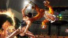 ПК-версия файтинга Dead or Alive 5: Last Round выйдет с опозданием
