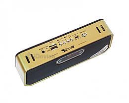 Портативная колонка Golon RX-S01BTD Bluetooth, USB, фото 2