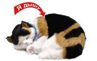 Perfect Petzzz Пятнистый кот