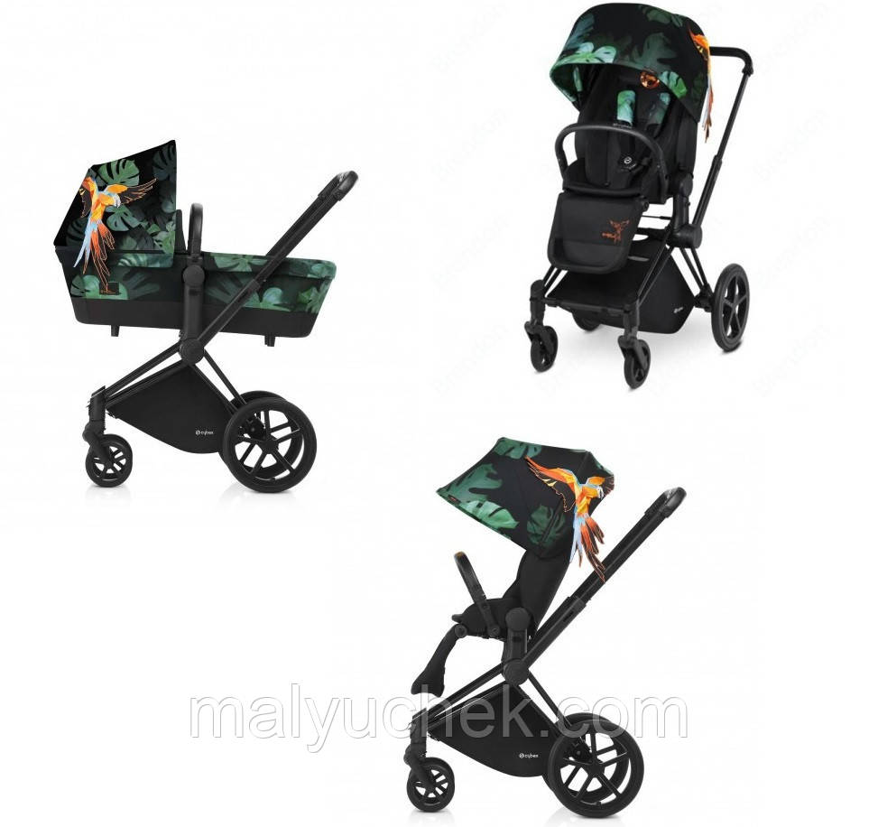 Cybex Priam Birds of Paradise 2в1, 3в1