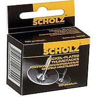 Кнопки Scholz 50 шт. никелированные 4831/04110040