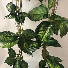 Искусственная лиана диффенбахия(5 шт в упаковке), фото 3