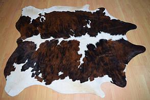 Шкура корови - коров'яча шкіра 01