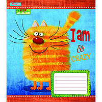 Тетрадь 1 Вересня 12 листов линия Crazy kitten №761769, фото 1