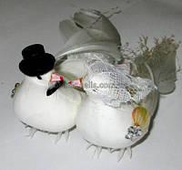 Голуби свадебные