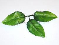 Листья розы 3-ка