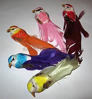 Птички искусственные 16см