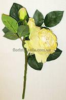 Ветка английских роз, кремовая