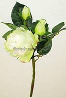 Ветка английских роз, салатовая