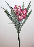 Весенний цветок, малиновый