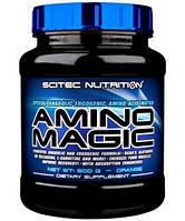 Аминокислоты Amino Magic (500 g )