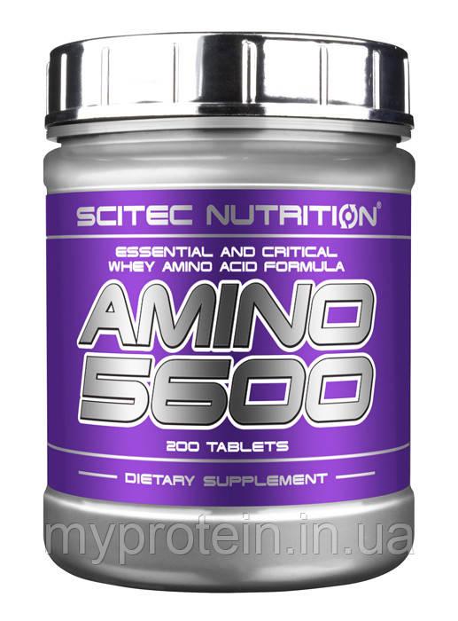 Scitec Nutrition Аминокислоты Amino 5600 (1000 tabs)