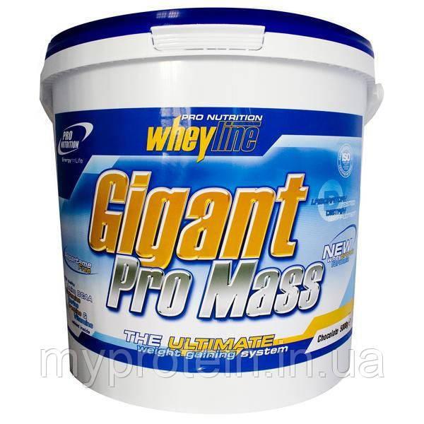 Гейнер Gigant Pro Mass (5 kg )