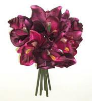 Букет цимбидиумов /орхидей бордовый