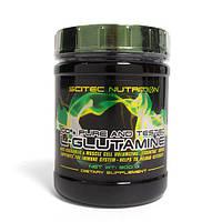 Scitec Nutrition Глютамин L-Glutamine (300 g)