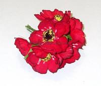Анемоны красные 4,5 см