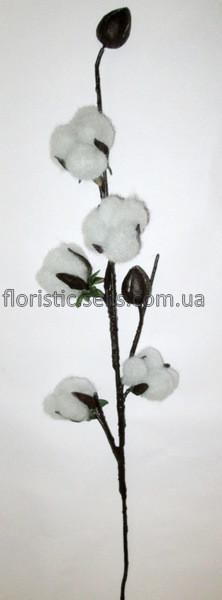 Цветы хлопок купить в одессе бесплатная доставка цветов в речицу гомельской обл