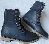 Зимние стильные женские сапоги ботинки Timberland синяя кожа, фото 1